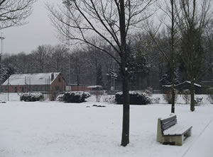 peerdsbos_Winter